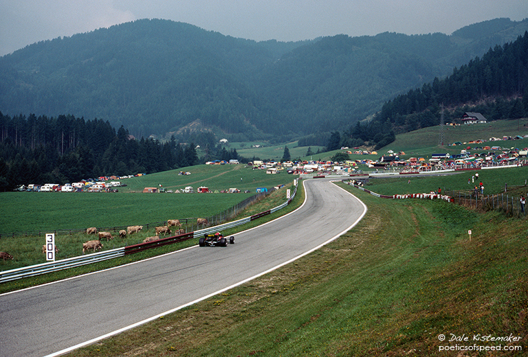 racecars&cows2.austria.83sign